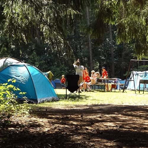 פעילויות במחנה קיץ